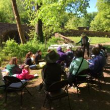 Buttercups and Cannon:  Day 9-Nature Journaling at the Stone Bridge