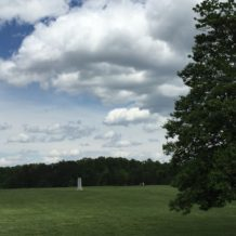 Buttercups and Cannon: View from the Terrace with Fellow Artist-in-Residence Cynthia Rusnak